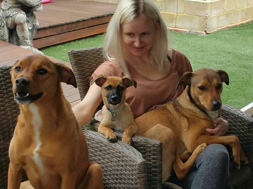 Bolt and Ruby – A SAFE. Inc Rescue Love Story