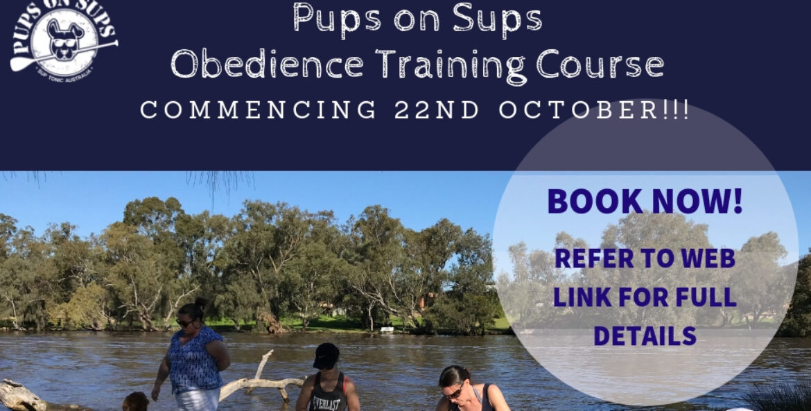 Pups on Sups Obedience Training Program