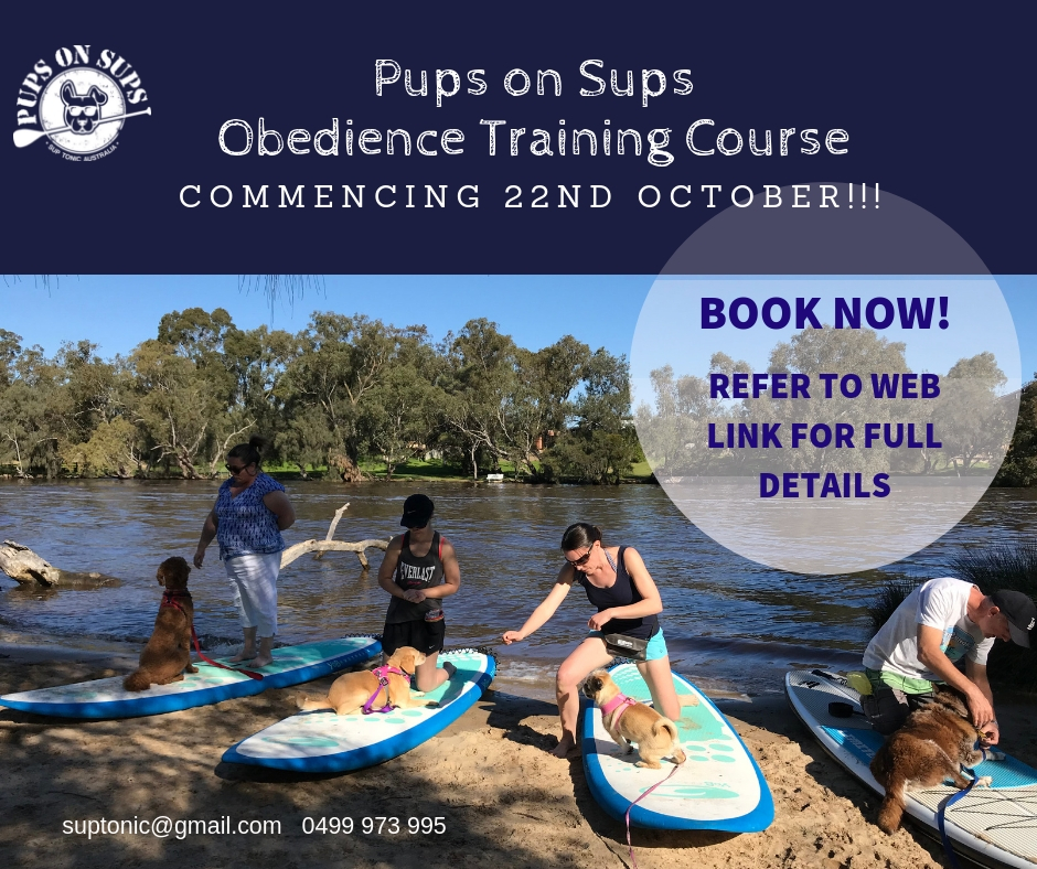 Pups on Sups Obedience Training Program