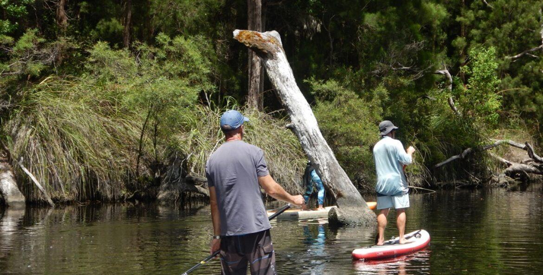 Walpole – Nornalup Western Australia