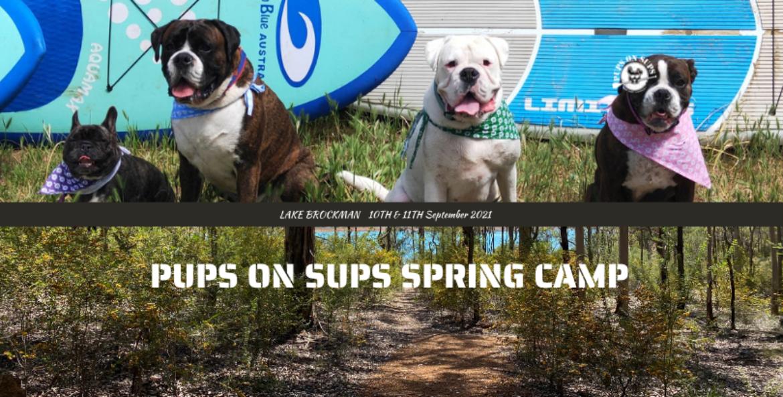 PUPS ON SUPS CAMP – LAKE BROCKMAN!