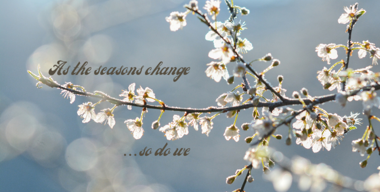 As the seasons change, so do we!